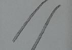 Whiteshoeslaying tire tracks