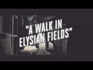 Intro Elysian