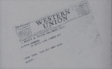 Thesetup telegram
