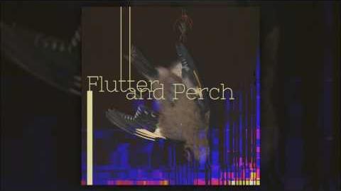 Darius & Renard - Flutter and Perch