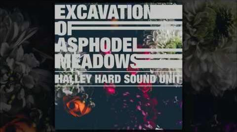 HALLEY HARD SOUND UNIT – Excavation of Asphodel Meadows