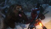 Lara Versus Bear
