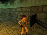 Tomb Raider V - 3