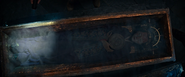 Himiko in Coffin