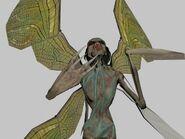 Boaz-Fly