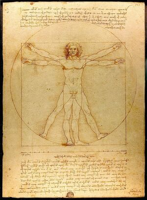 800px-Da Vinci Vitruve Luc Viatour