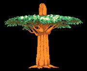 Stage tree