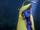 Yellow-terminator