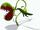 Insectivorous Plant