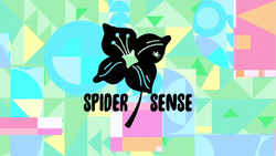 Spider SenseCardHD