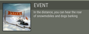 Snowy Race Track event