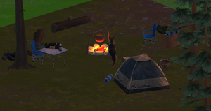 Camp screen 1