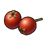 Berries-0