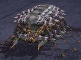 SS Pest