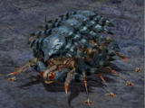 Killer Insect