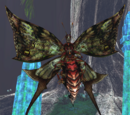 Echidnamoth