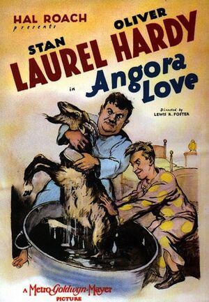 Lh angora love poster
