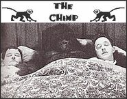 Laurel and Hardy The Chimp