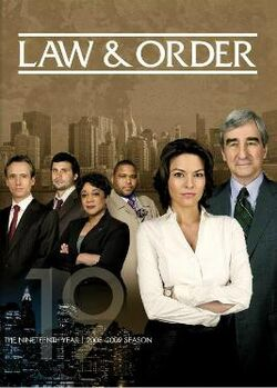Law and Order S19 (DVD)