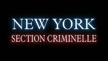 Section criminelle
