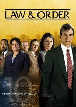 Law and Order S10 (DVD)