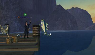 Screenshot 2011-10-30 15-16-27