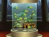 Wimmelfische