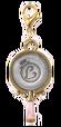 Nazotoki Charm 11
