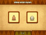 Hase Auswahl