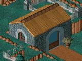 Twinsen's House