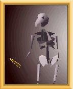 Character Skeleton