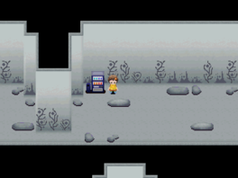 Silver ruins vending machine