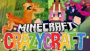 Crazy Craft 10