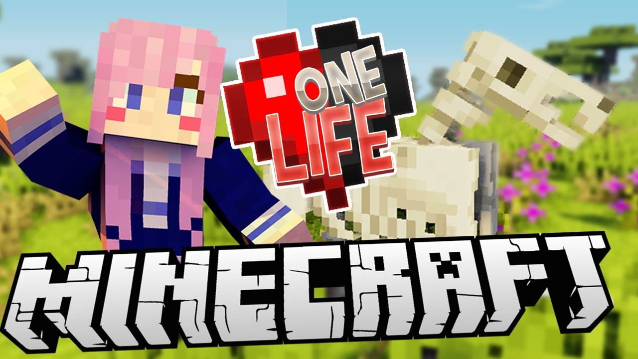 One Life | LDShadowLady Wiki | FANDOM powered by Wikia