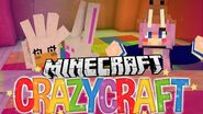 Crazy Craft 17
