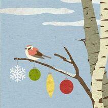 Sparrowbirch1