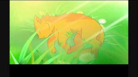 SSS Warrior cats intro - English