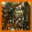 Icon Medieval Armor
