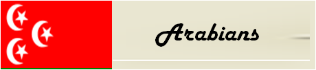 File:Arabianname&flag.png