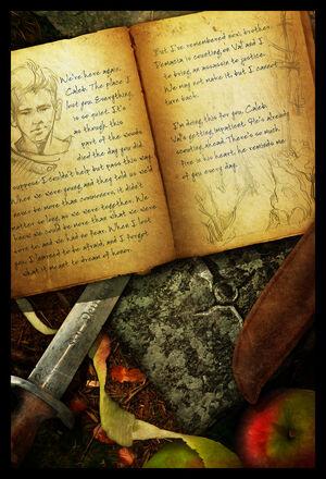 Quinns Journal p4