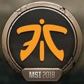 MSI 2018 Fnatic profileicon.png