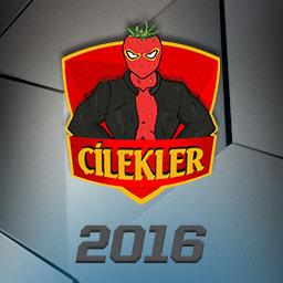 File:ÇİLEKLER 2016 profileicon.png