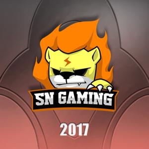 File:Suning Gaming 2017 profileicon.png