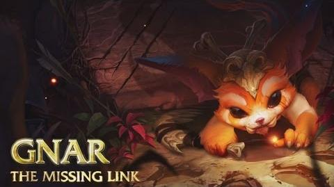Gnar Champion Spotlight