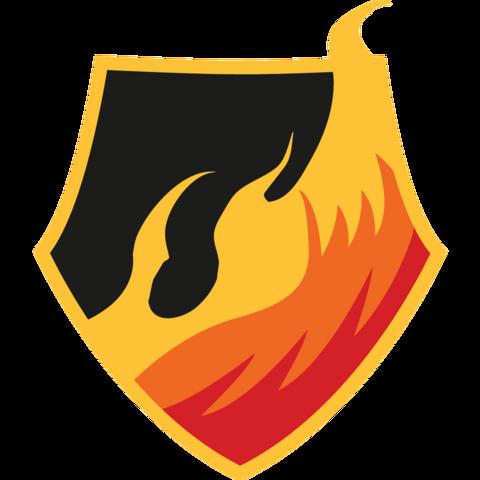 Team Fire 2016