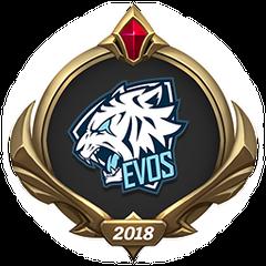 MSI 2018 – EVS