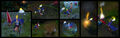 Janna Forecast Screenshots.jpg
