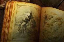 AAMIR Ancientbook