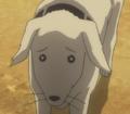 AlexHawks dogdog.png