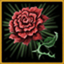 Rose old profileicon
